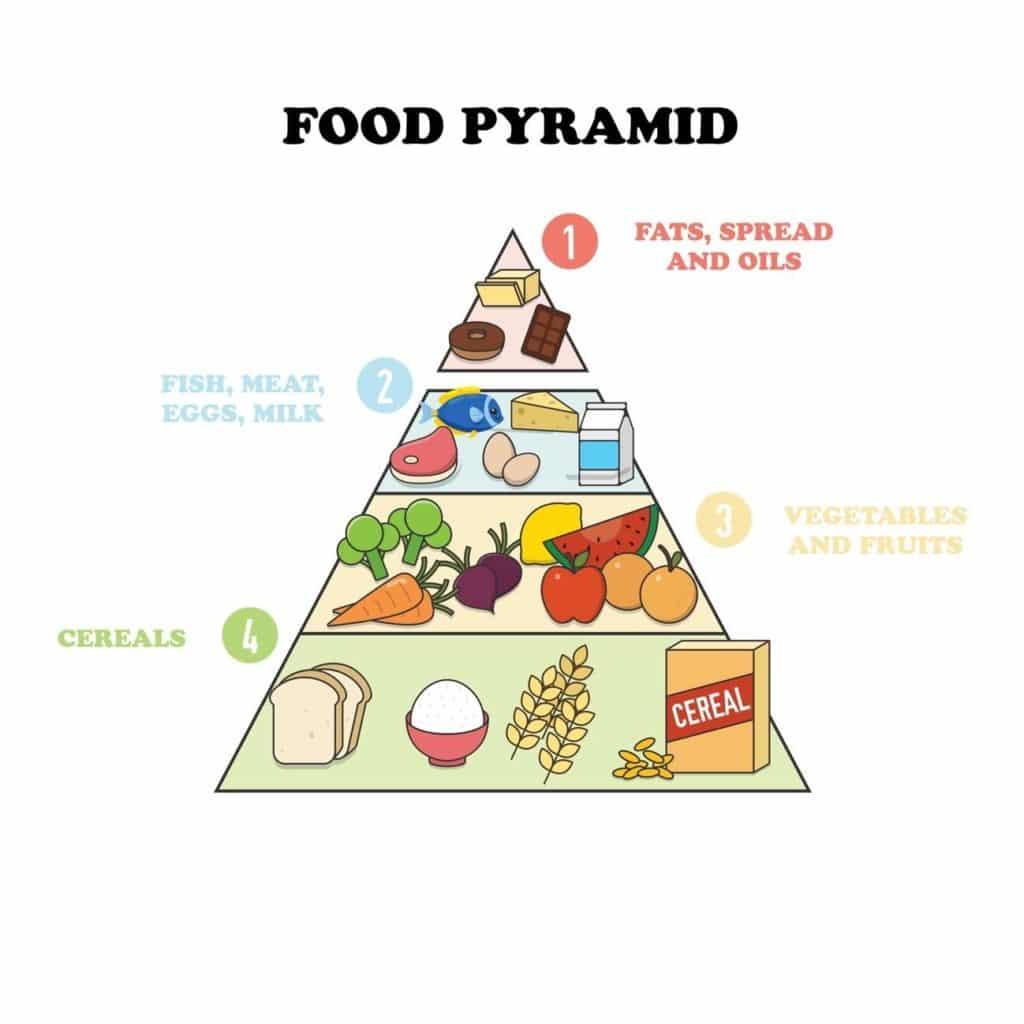 la pirámide alimenticia para niños en inglés - Academia de inglés Number 16 School